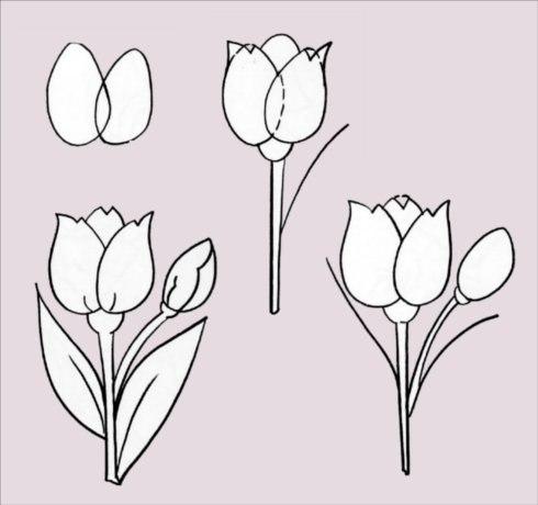 как рисовать разные цветы.